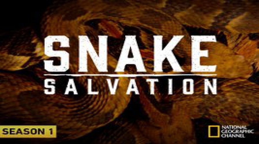 Snake Salvation